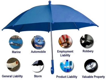 Business Umbrella Dodge Insurance Llc